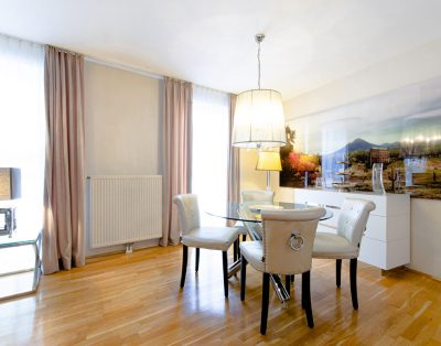 City Center Penthouse Residence Graben