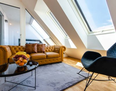 Central Penthouse near Donaukanal