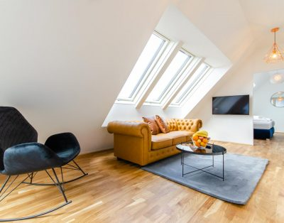 Apartment in Vienna with hand-picked design