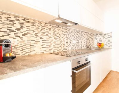 Comfortable & elegant serviced apartment in the heart of urban Vienna